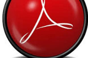 Adobe Acrobat Reader XI Pro