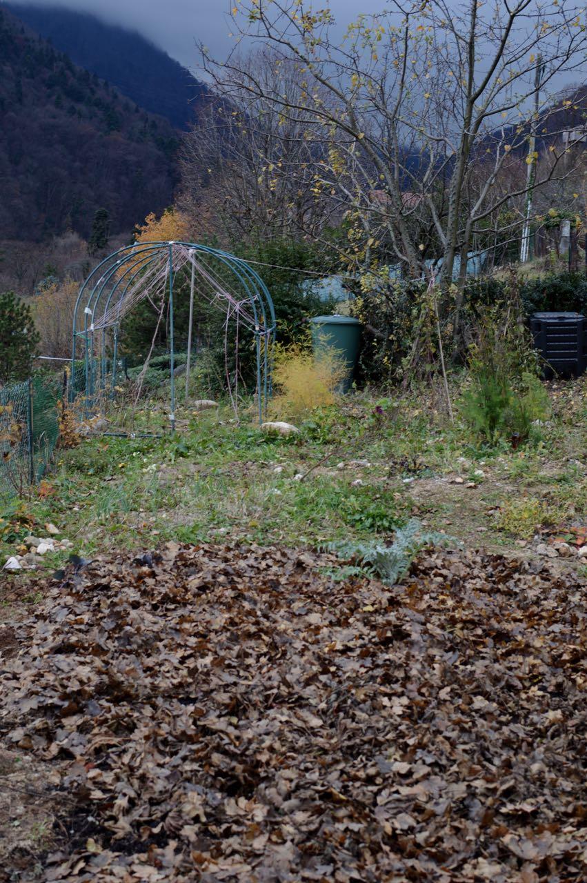 autumn garden01