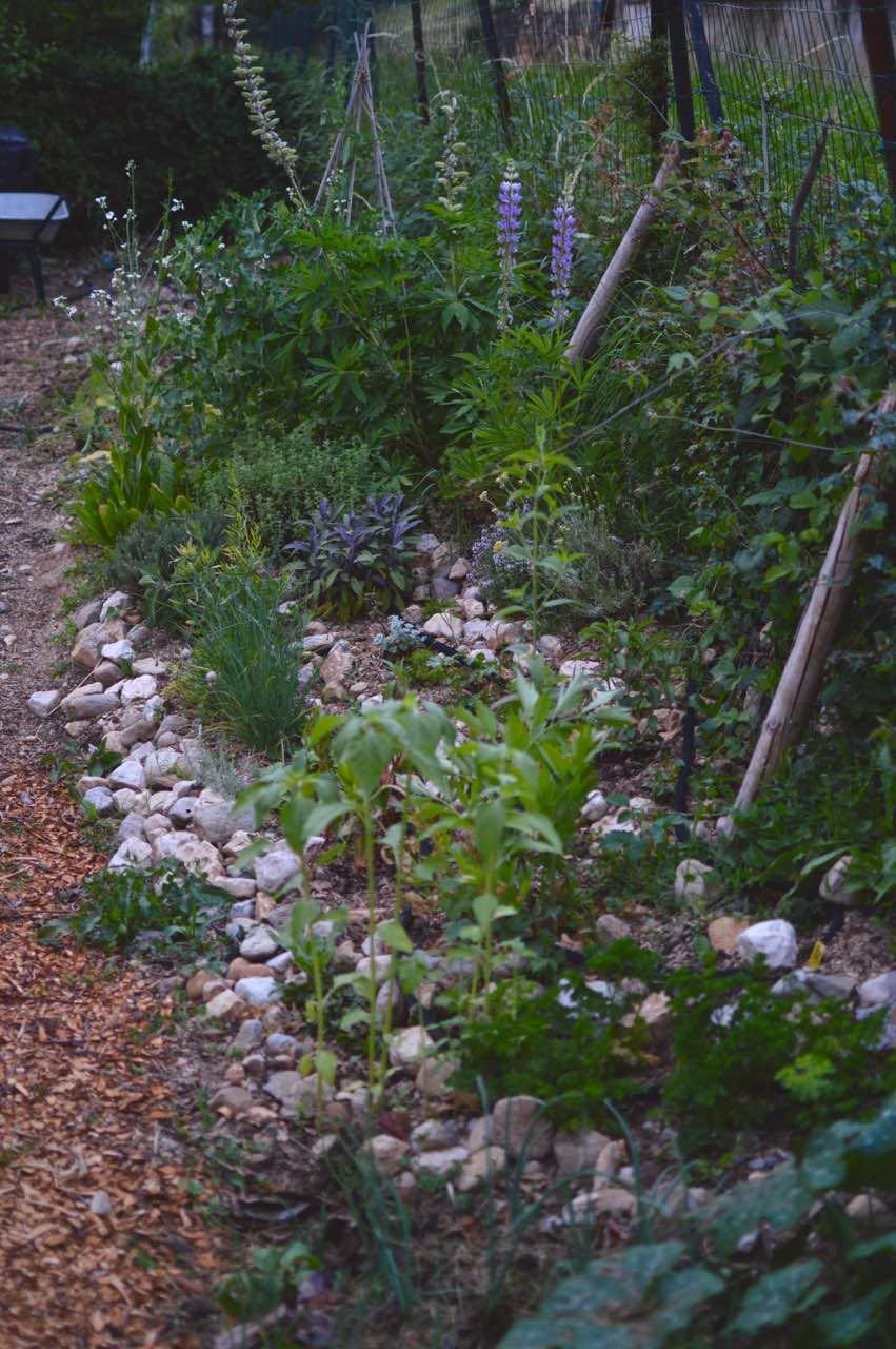 herb spiral kitchen garden - pakovska.com