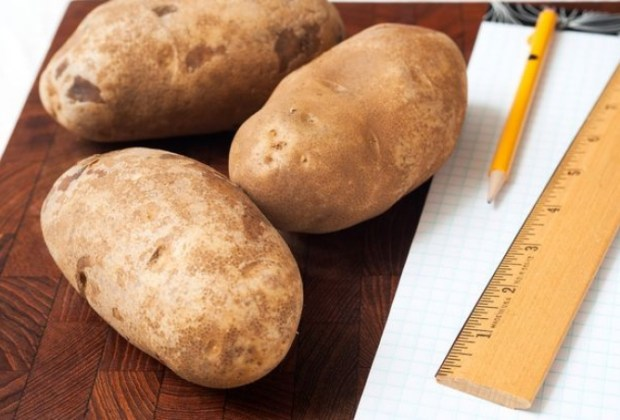 OSMOSIS: EXPERIMENT WITH POTATO