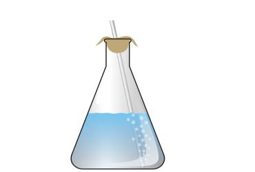 vinegar and baking soda reaction fountain