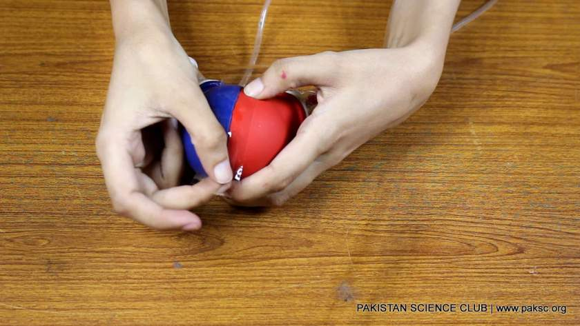 attach the parst of our heart