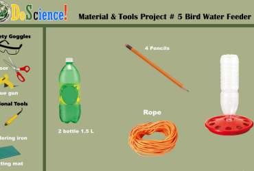 water feeder for birds