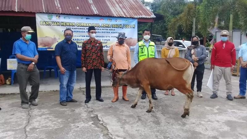 Dua PT. KPP dan PT. PAMA  Bantu 6 Ekor Sapi Untuk Qurban Desa Binaan.