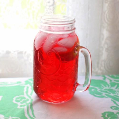 Mrs. Mango's Iced Hibiscus Flower Tea