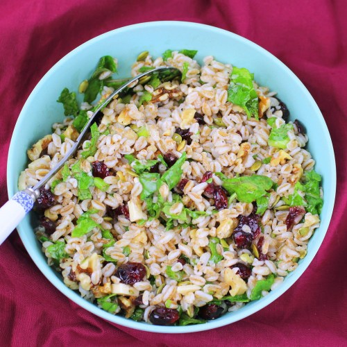 Farro Salad with Cranberries, Walnuts and Kale