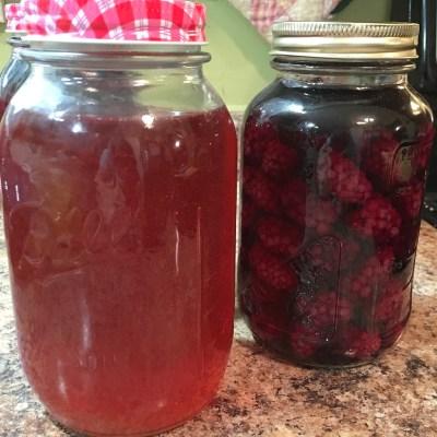 Homemade Berry Vinegar