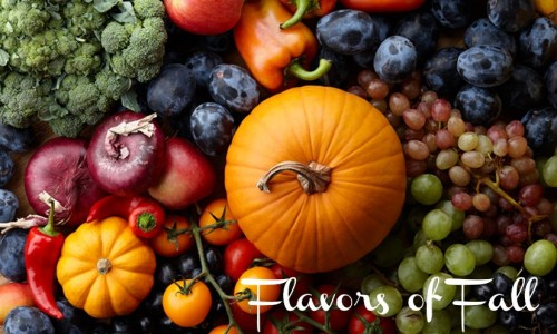 Flavors of Fall lgo