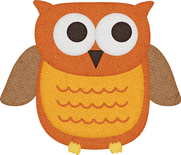 happy owl