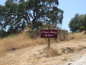 A winding country road sets the stage for merriment upon arrival at the Twisted Oak Winery tasting room.