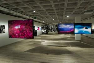 KBr. Exposición Claudia Andujar