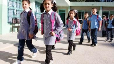 Photo of منسق الأمم المتحدة : قد لا تفتح المدارس في موعدها بغزة والأزمة سياسية