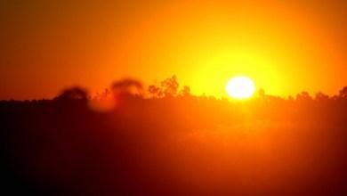 صورة حرارة ضمن معدلاتها خلال الأيام القادمة ولا موجات حارة متوقعة