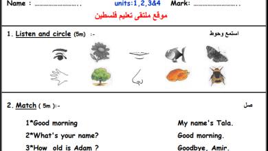 صورة مجمع امتحانات نصف الفصل الأول لمبحث اللغة الإنجليزية للصف الثاني الأساسي