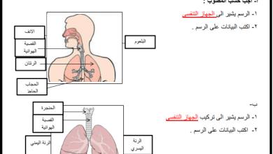 صورة أسئلة هامة ومجابة لصحة الجهاز التنفسي وسلامته لعلوم رابع الفصل الأول
