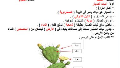 صورة تلخيص رائع ومجاب للتكيف عند النباتات لمبحث علوم الصف الثالث الفصل الثاني