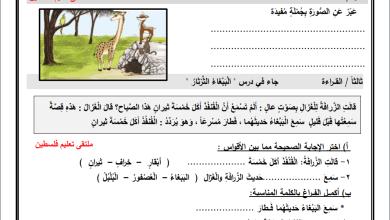 Photo of أوراق عمل رائعة لدرس الببغاء الثرثار لمبحث اللغة العربية ثاني الفصل الثاني