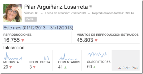 Estadísticas PALEL - diciembre 2013