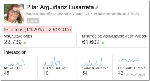 Estadísticas enero 2015 – palel.es
