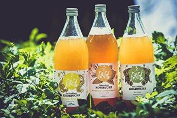 Bio-Kombucha Tee Getränk (3x1 Liter / unpasteurisiert / Grüner Tee / Fermentiert von Fairment®) … - 4