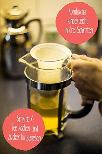 Original Kombucha Tee Pilz in Premium Größe Besonders Vitaler Scoby in Bio-Qualität für 1-5L Mit Kombucha Getränk Anleitung und Erfolgsgarantie von Fairment ® - 5