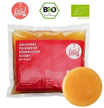 Original Kombucha Tee Pilz in Premium Größe Besonders Vitaler Scoby in Bio-Qualität für 1-5L Mit Kombucha Getränk Anleitung und Erfolgsgarantie von Fairment ® - 1