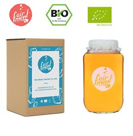 Original Wasser-Kefir Set mit vitalen Bio-Japan-Kristallen und Kefir-Getränk für bis zu 3 L pro Ansatz mit einfacher Anleitung, Rezept und Erfolgsgarantie von Fairment® … - 1