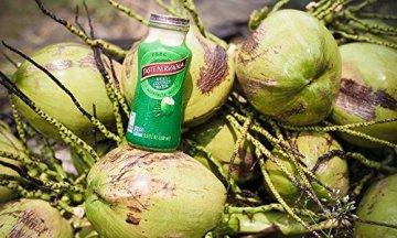 TASTE NIRVANA Real Coconut Water PURE - Premium Kokoswasser ohne Fruchtfleisch (Set: 12 Flaschen x 280ml) aus Thailands erntefrischen jungen Nam Hom Kokosnüssen - 4