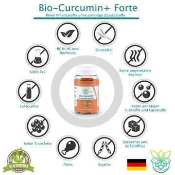 VITARAGNA Curcumin Forte, 60 Kurkuma Kapseln hochdosiert mit Kurkuma-Extrakt, BioPerine, Ingwer-Extrakt, Hochdosiertes Curcuma Bioperin (Schwarzer-Pfeffer), starkes natürliches Antioxidans - 4