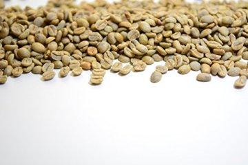 VITARAGNA Eden Body Fatburner Grüner Kaffee Extrakt 60 Kapseln, 500 mg, 50% Chlorogensäure, Green-Coffee Fettverbrenner Diät-Pillen, Abnehm-Pillen zum natürlich abnehmen auch bei Bauchfett - 7