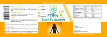 VITARAGNA Eden Body Fatburner Ning-Hong 120 Kapseln, Fettverbrenner Diät-Pillen bzw Abnehm-Pillen mit L-Carnitin & Bitterorange, natürlich abnehmen bei Bauchfett, clean - 2