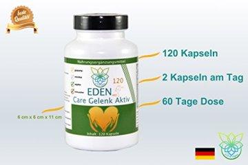 VITARAGNA Eden Care Gelenk Aktiv Pro 120 Kapseln Complex Gelenkskur, Regeneration der Gelenke mit Glucosamin-Sulfat, Gelatine, Kurkuma / Curcumin uvm, hochdosiert - 4