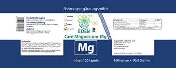 VITARAGNA Magnesium Kapseln Pur | Magnesiumcitrat und Magnesium Glycinat Pulver in Kapseln | Frei von Zusatzstoffen wie Magnesiumstearat oder Gelatine | Laborgeprüft | Magnesium-Komplex 120 Kapseln - 2