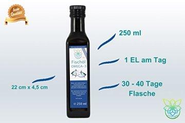 VITARAGNA Omega 3 Fischöl (Lachsöl) mit Zitronenöl und Rosmarin-Extrakt, 250ml, mit natürlichem Vitamin E-Tocopherol-Komplex, Hoher EPA und DHA Anteil - 4