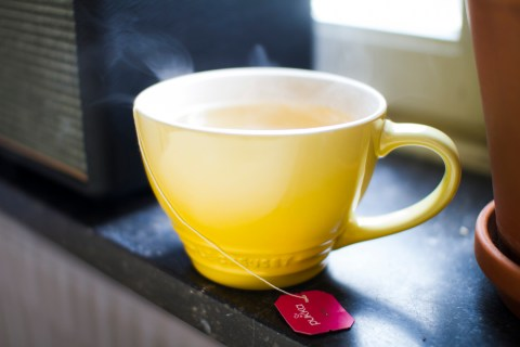 Our only food during our three days of fasting: Pukka Herbal tea