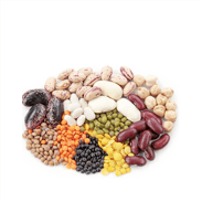 paleo diet foods to avoid