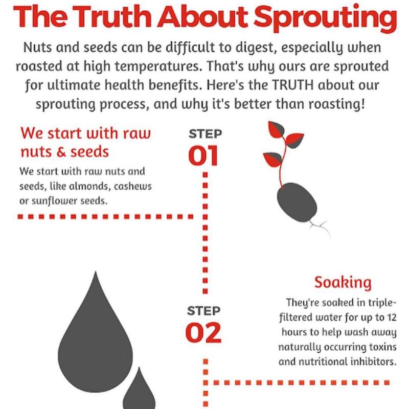 Truth about Sprouting - Healthy Truth - Certified Paleo, Paleo Vegan - Paleo Foundation - Paleo Diet - Paleo Lifestyle