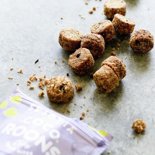 Chocolate Chip Coco-roons - Sejoyia - Certified Paleo, Paleo Vegan - Paleo Foundation