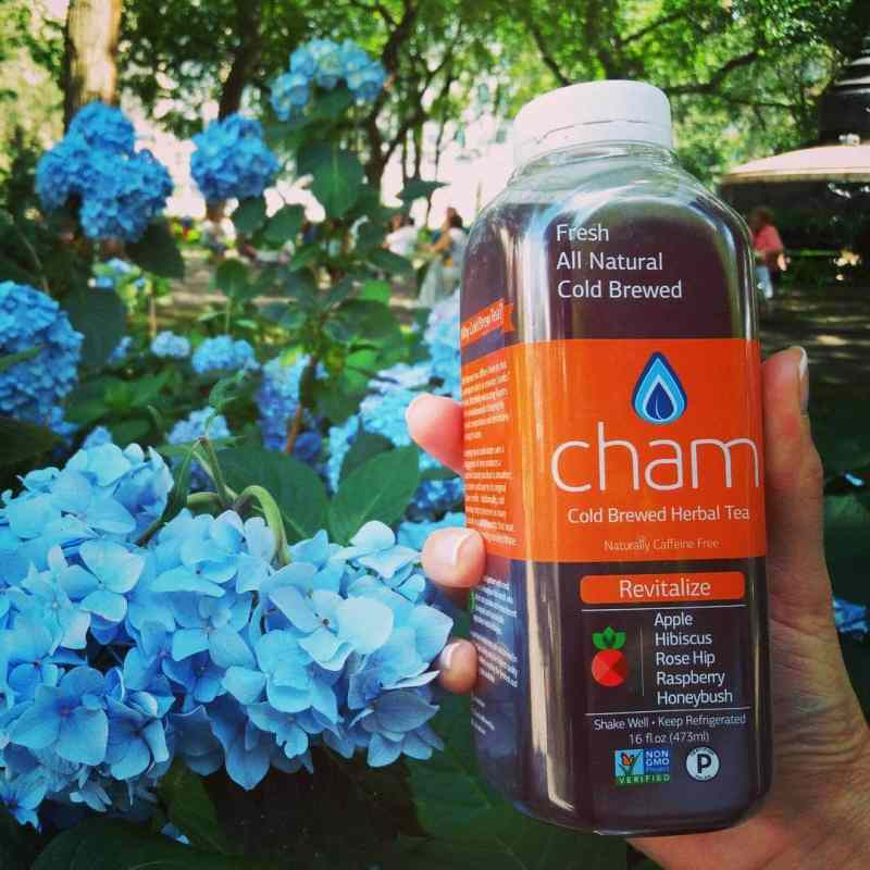 Cham Cold Brew Tea - Certified Paleo - Paleo Foundation