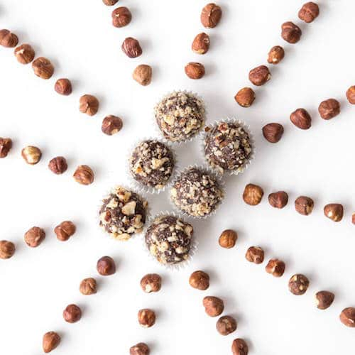 Hazelnut Lifestyle - Nomz Organic - Certified Paleo - Paleo Foundation