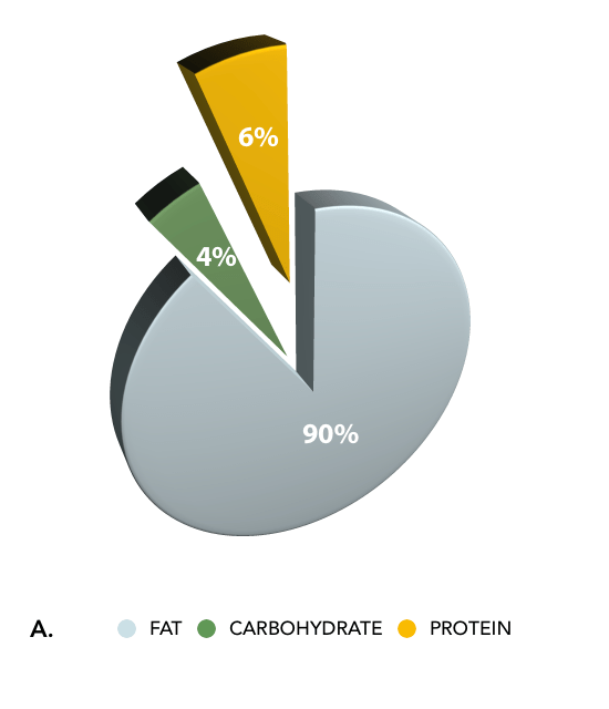 Percentage Fat, Protein, and Carbohydrate in the Classical Ketogenic Diet