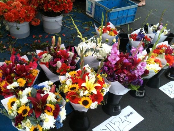 Pretty flowers at the farmer's market. They're very tempting to buy, but one of our cats loves to eat them. We end up having to hide the flowers, so it's kinda pointless. (Taken on iPhone).