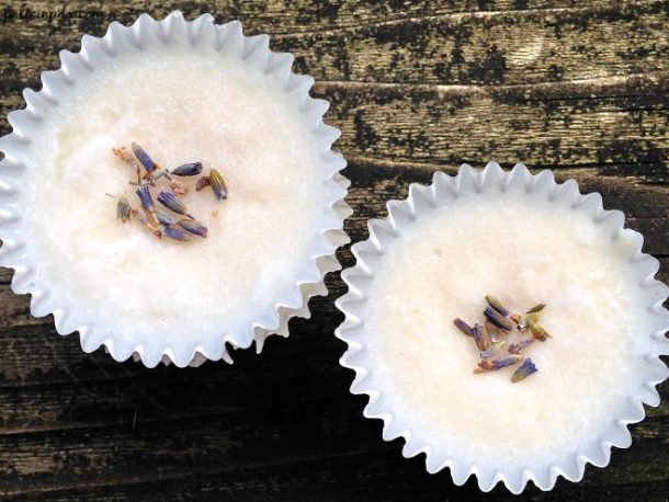lavender meltways birds eye
