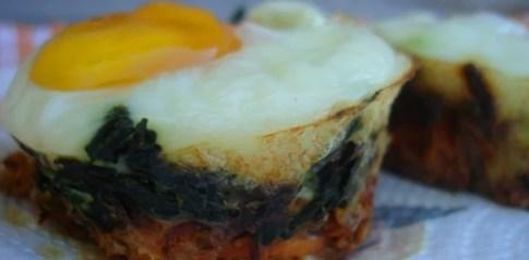 egg nests5