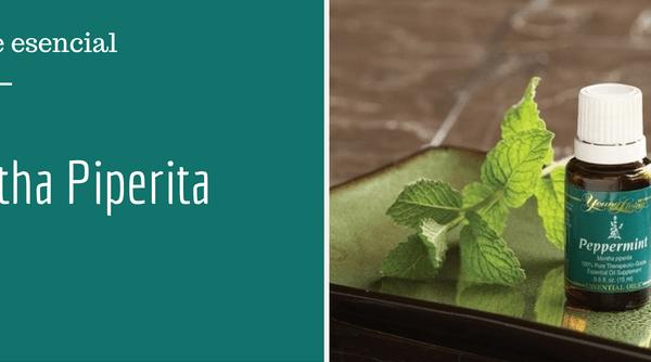 El aceite esencial de menta y tu salud intestinal