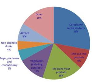 sources of calories in modern diet