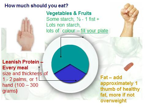 Weight loss on the paleo diet - a guide to portion control
