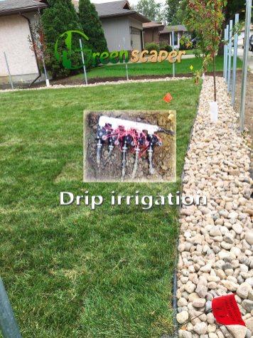 drip_irrigation_systeminregina04162018