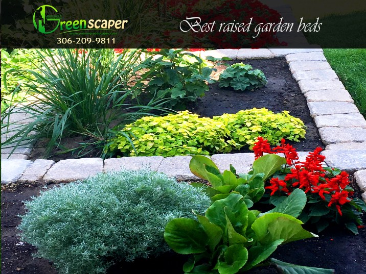 best_raised_garden_bed_landscaping_in_regina08202018