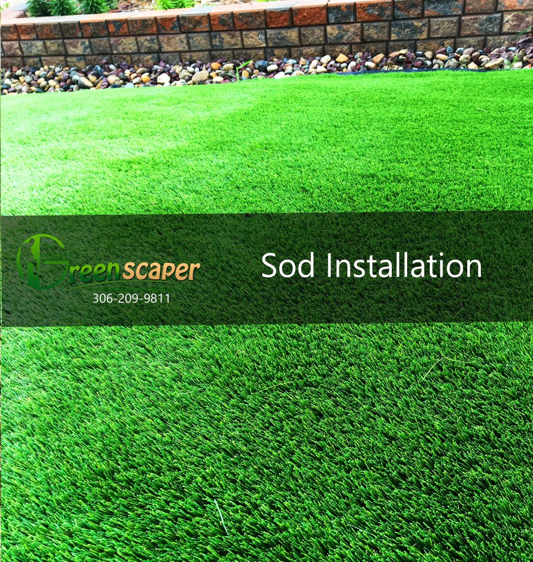Sod Landscaping Project in Regina